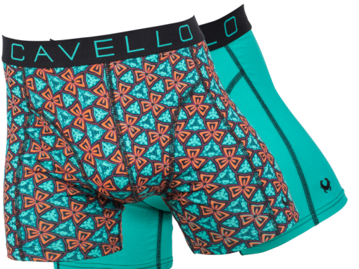 Cavello 2-pack Abstract Flowers & Green j style menswear