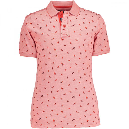 State of art polo rood