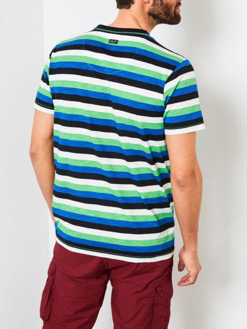 Petrol Industries Gestreept t-shirt Andean Toucan