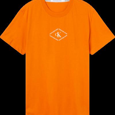 CALVIN KLEIN T-SHIRT MET LOGO Rusty orange